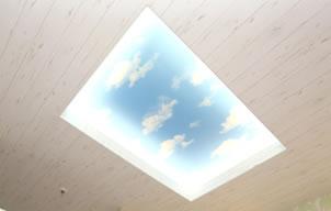 天井に空が見えるようになっています。